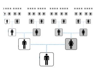 Algoritmo genetico - Ricerca della soluzione